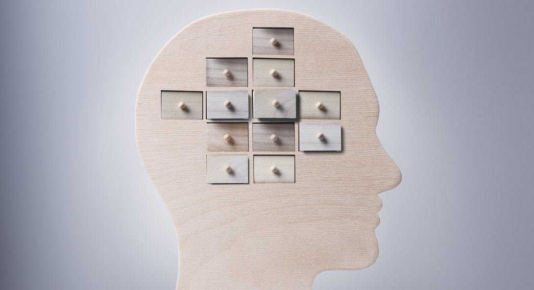 Neuroplasticity: Shining the Light on Learning and Memory